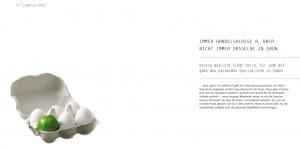 Broschüre für das IT-Unternehmen Pronovit